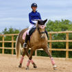 Picture of Vision Dressage Pad